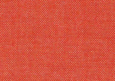 Ladybug 63.17*